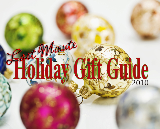 Last Minute Holiday Gift Guide — Under $100