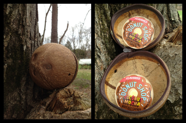coconut-mocha-k-cups