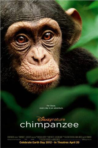 Disney Chimpanzee