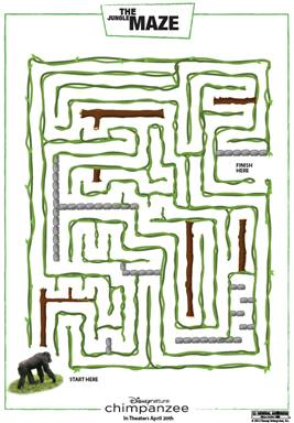 chimpanzee  Maze