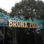 See What's Happening at The Bronx Zoo in July – Plus, a Contest! #BronxZoo