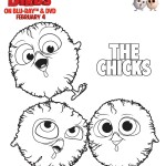 Free birds Chicks Coloring page