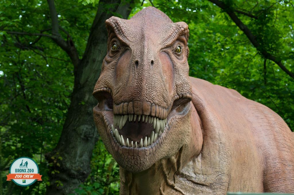 Julie Larsen Maher 5561 Dinosaur Tyrannosaurus BZ 2
