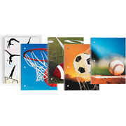 Staples Sports Notebooks