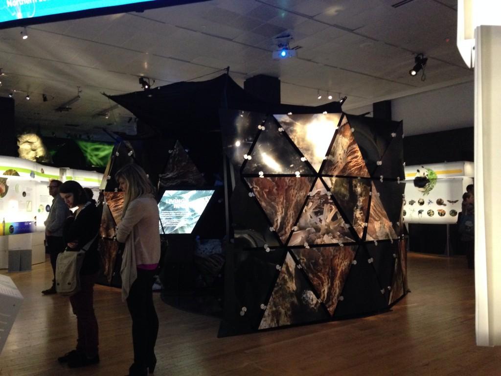 AMNH Indoor Cave