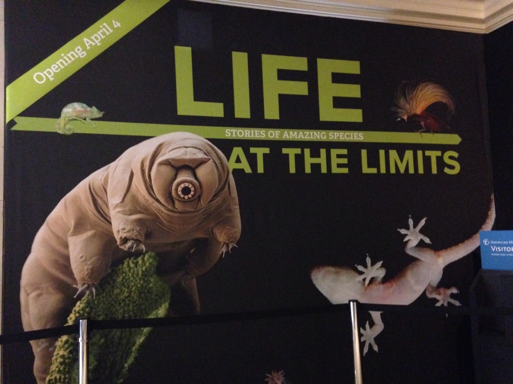 Life at the Limits at AMNH