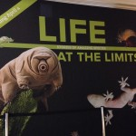New Exhibit at AMNH ~ Opening April 4, 2015 ~ #LifeattheLimits: Stories of Amazing Species