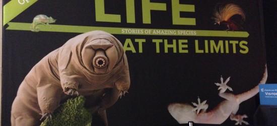 Life at the Limits at AMNH